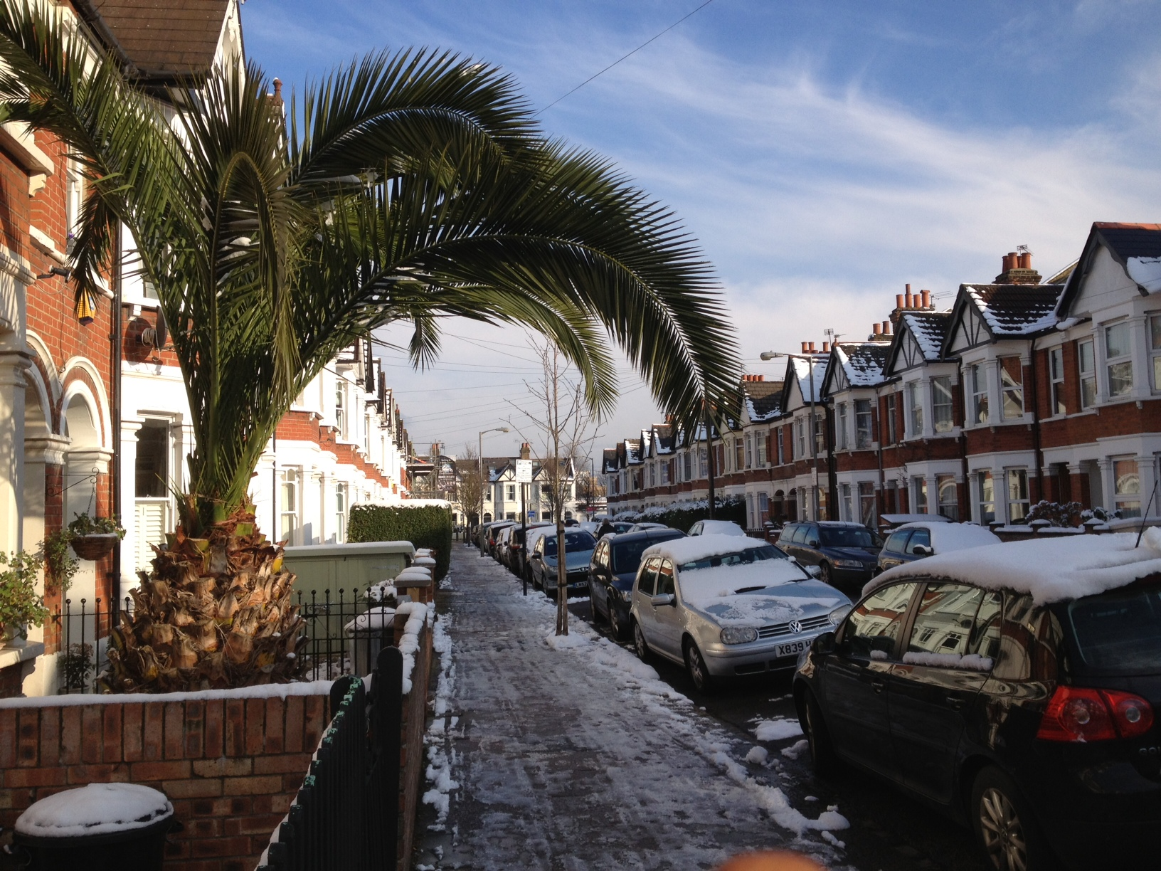 Snow and Palmtrees London