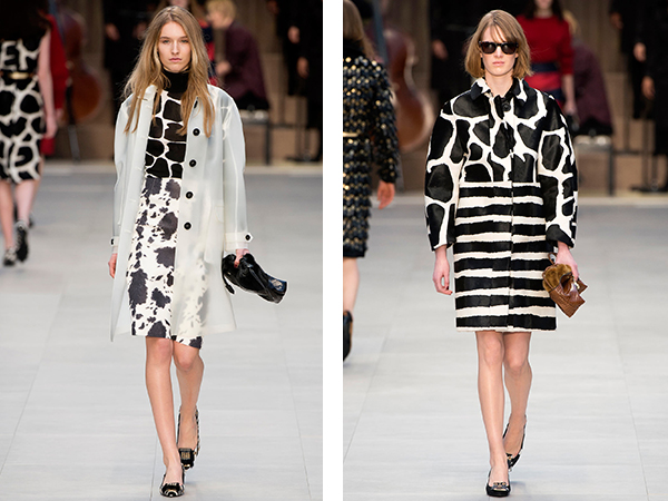 Burberry Cow print