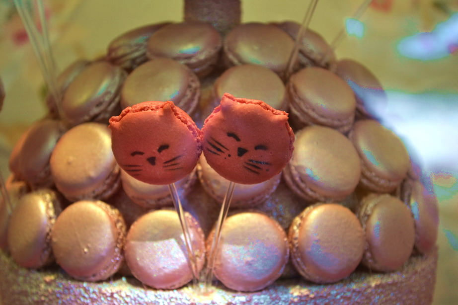 Badou Badou Cat Macarons Paris