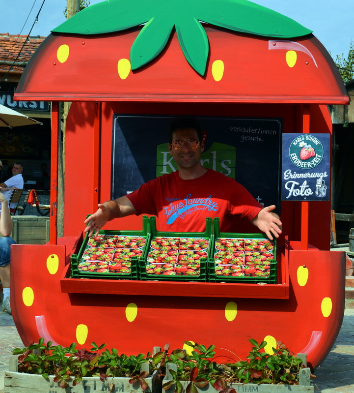 Strawberry hut Karl's strawberry Farm near Berlin