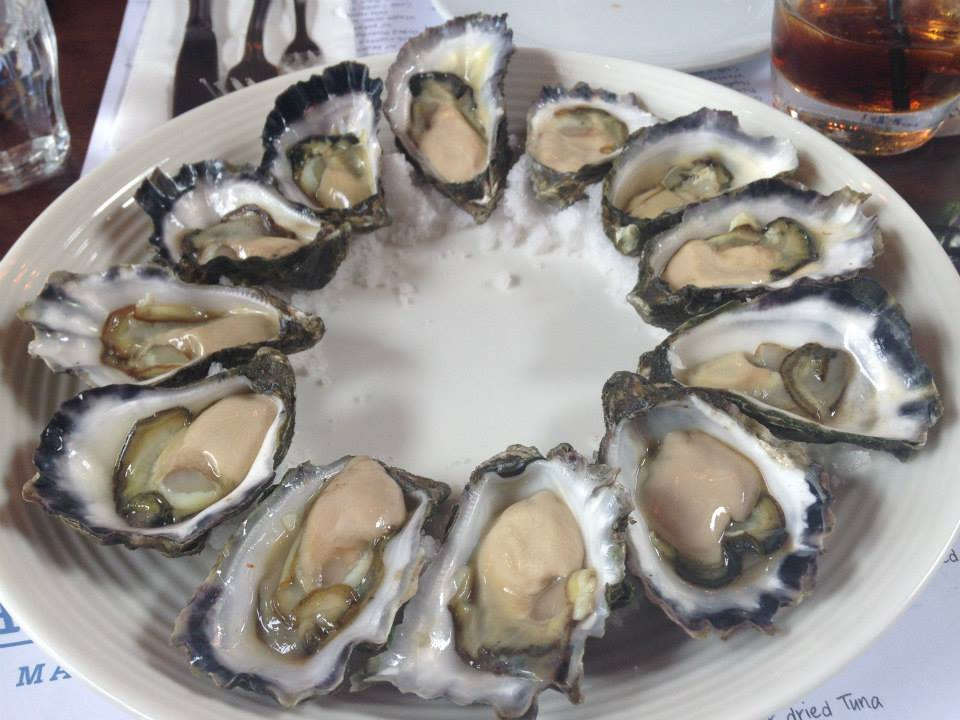 Fresh oysters from the Sydney fish market.